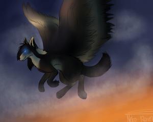 Neko--Raven's Profile Picture