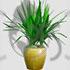 W-green-plants by iTech-PFS