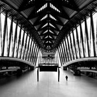 Lyon ::6 by MisterKey