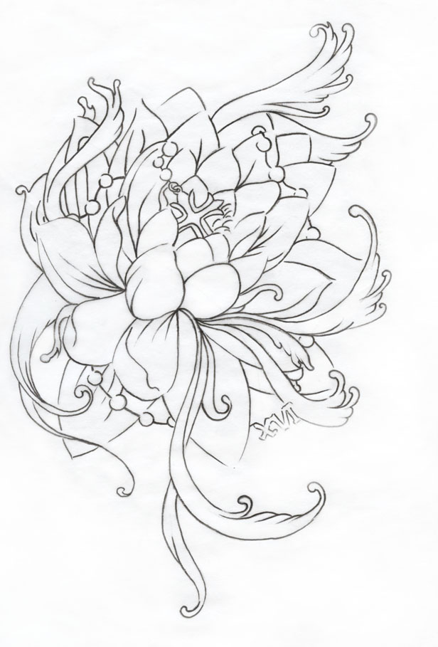 Japanese Flower Line Drawing : Japanese lotus flower outline imgkid the image
