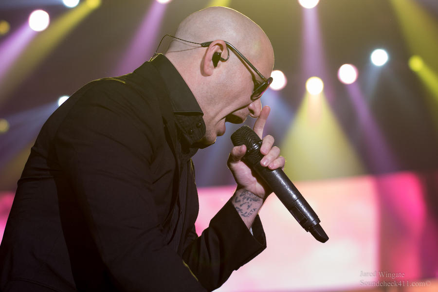 Pitbull by JaredWingate