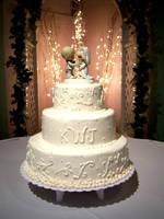 wedding cake by Leikela4