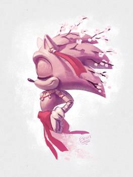 GOTF Sakura Sonic doodle