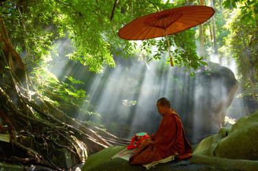 Meditation I by esee