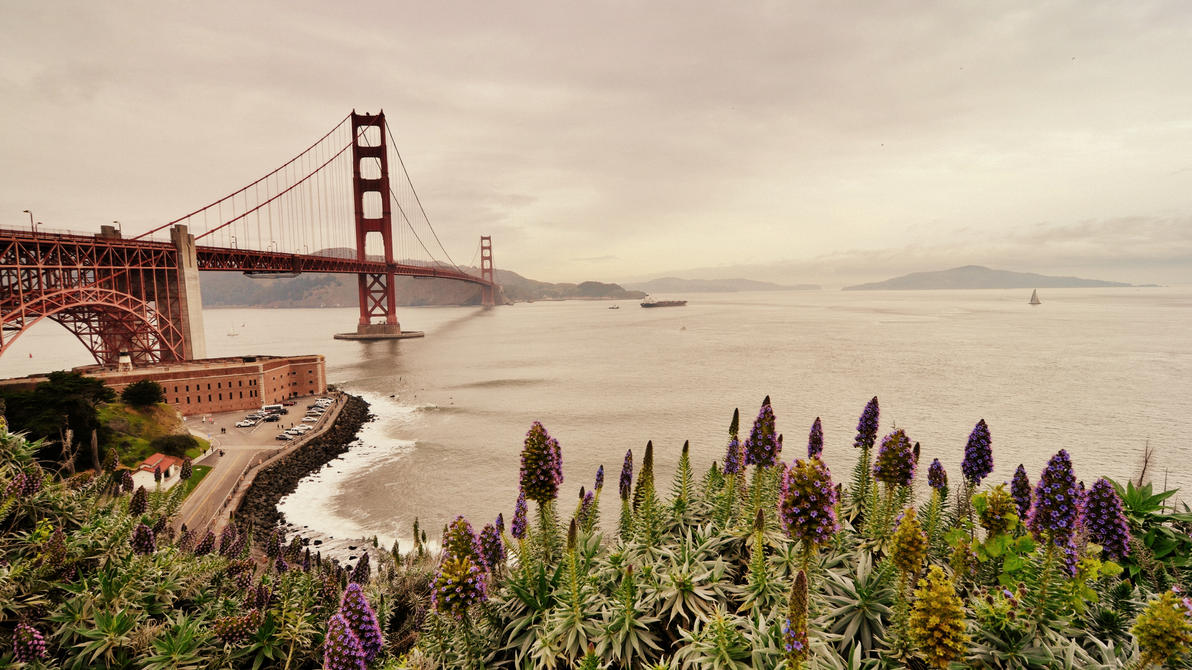 Golden Gate Bridge VI by esee