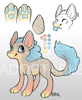 Adoptable Canine OPEN