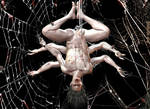 Spider-Morbius (Spiderbius) Pic 1 of 3 by TheGeminiDream