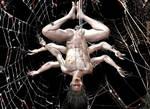 Spider-Morbius (Spiderbius) Pic 1 of 3 by TheGeminiDream