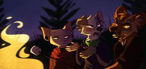 Camping//