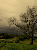 Storm Ahead. by Lewkeisthename