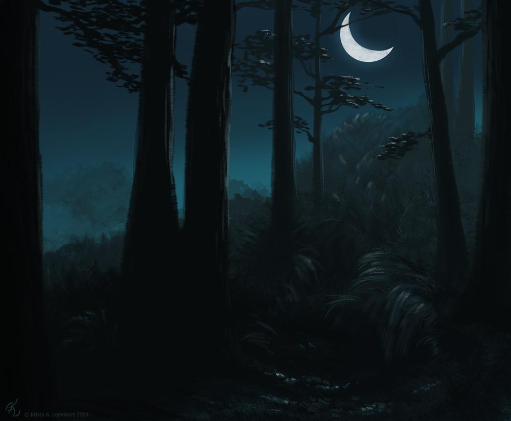 Forest Concept by krazykrista
