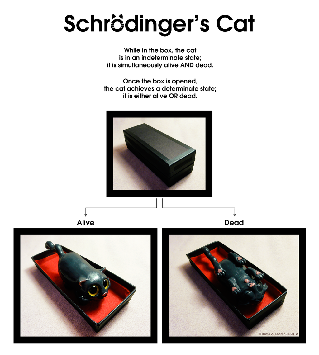 Schrodinger's Cat by krazykrista on DeviantArt