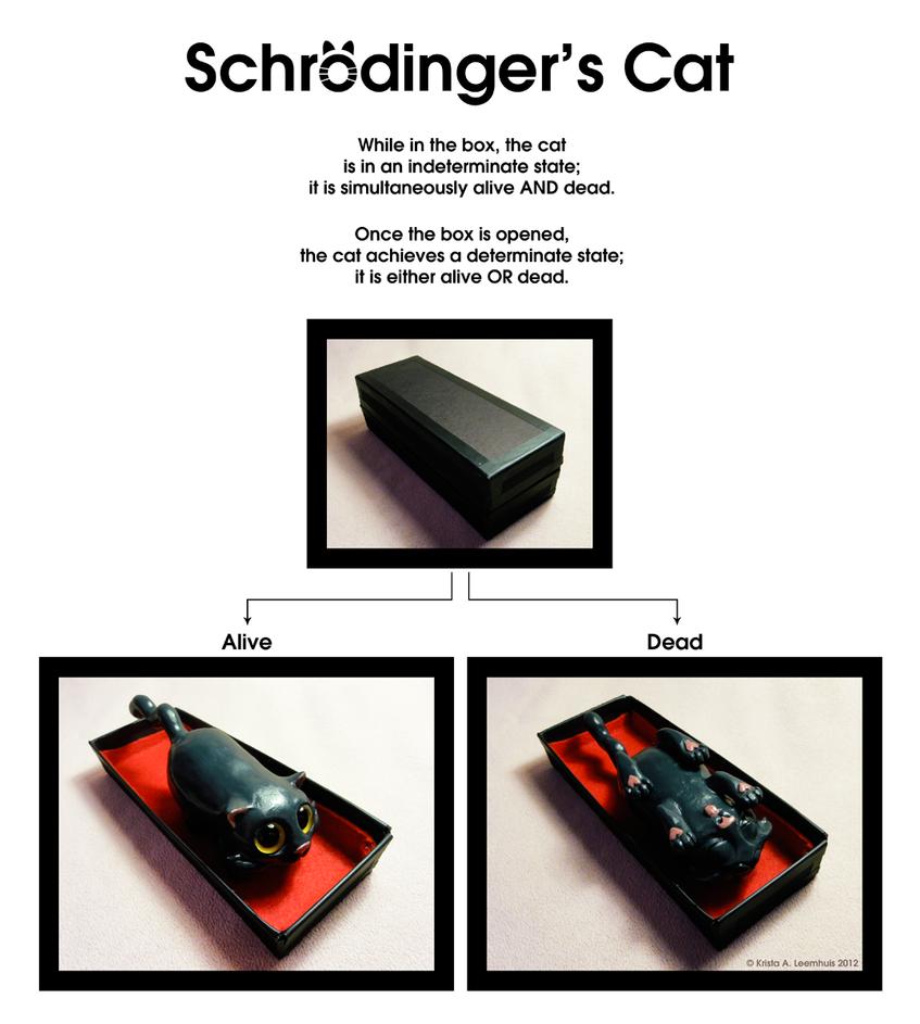Schrodinger's Cat by krazykrista on DeviantArt