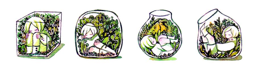 terrariums by koyamori