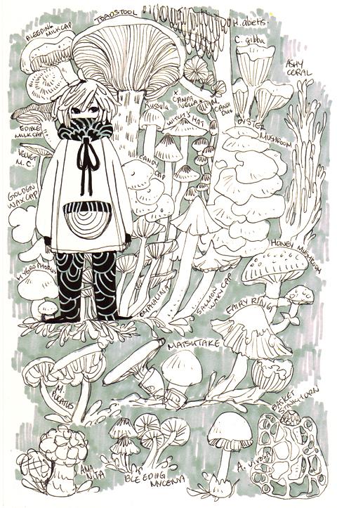mushroom notes by koyamori