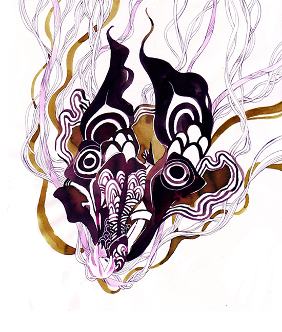 moth in web by koyamori