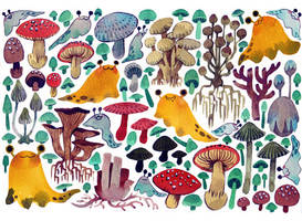 Mushrooms + Slugs