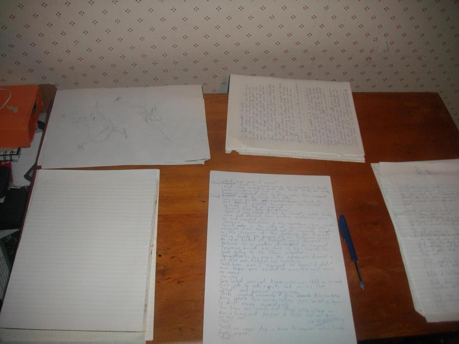 My writing desk by KiwiLombax15