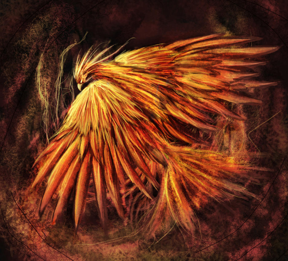 Fire Bird by DrexilWatcher
