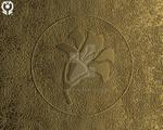 SYMBOLISM: The Plant of Life