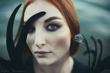Swan by prismes