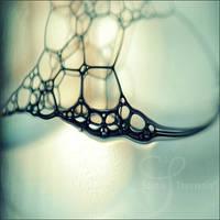 cellular V by prismes