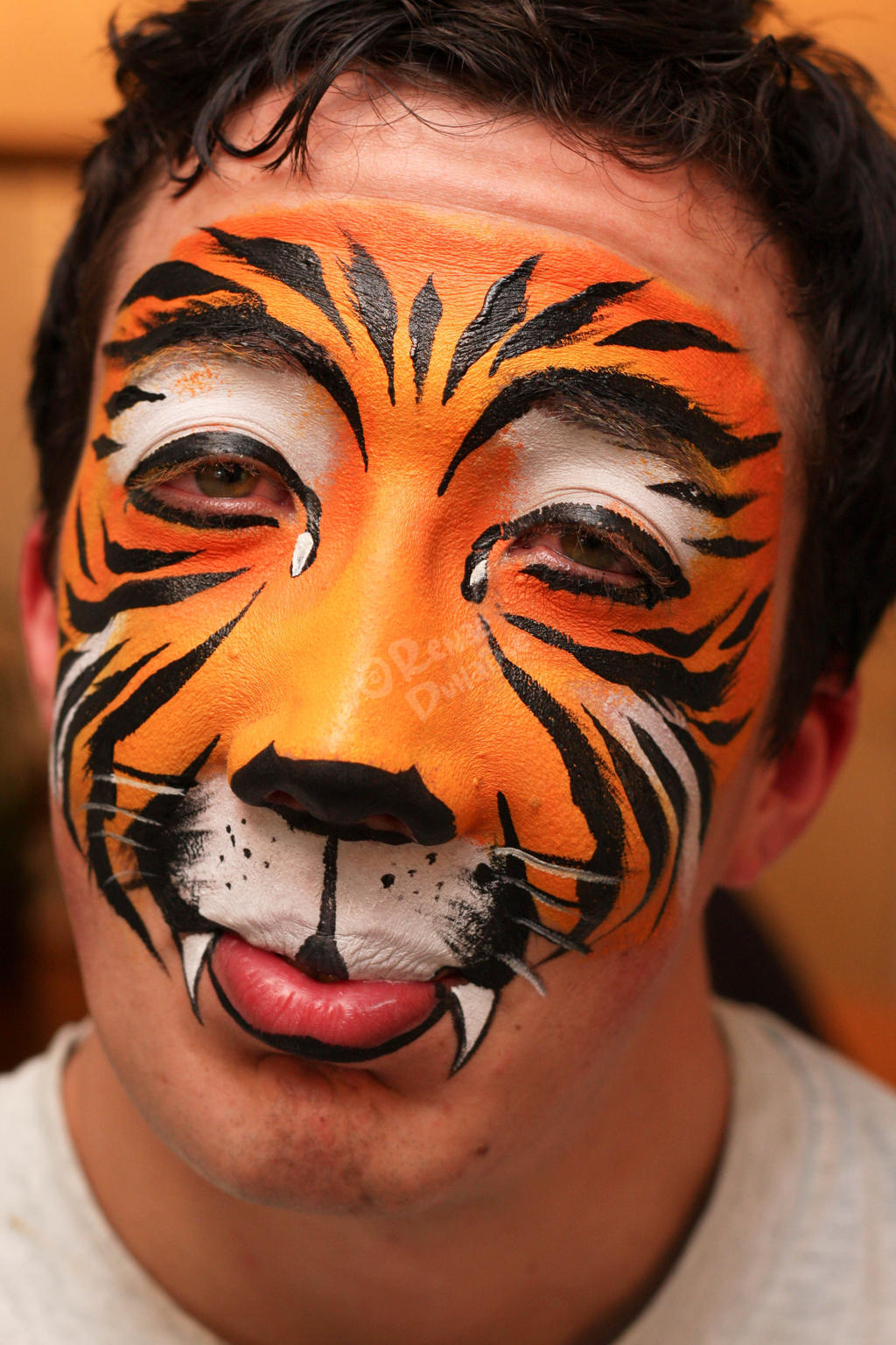 Tiger Half Face Paint