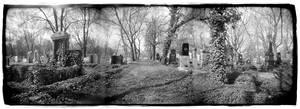 Jewish Cemetery In Sofia by Veniamin