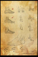 Study: The leg 4 by Shockowaffel