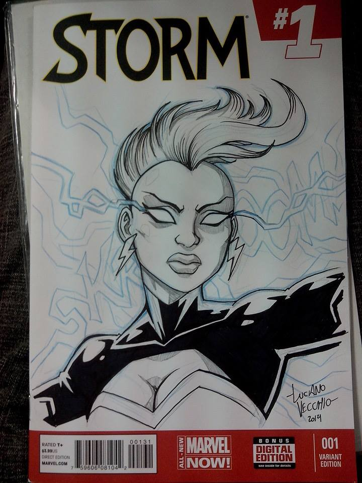 NYCC Commissions - Storm by LucianoVecchio