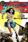 Wonder Woman 80 Years