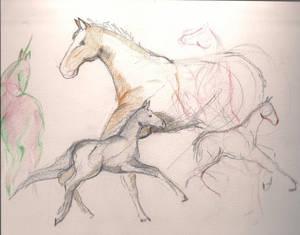 Unicorn and Horses