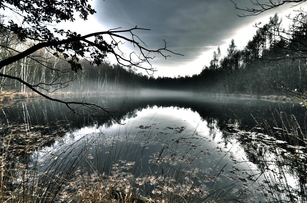 Lake by emmy-b
