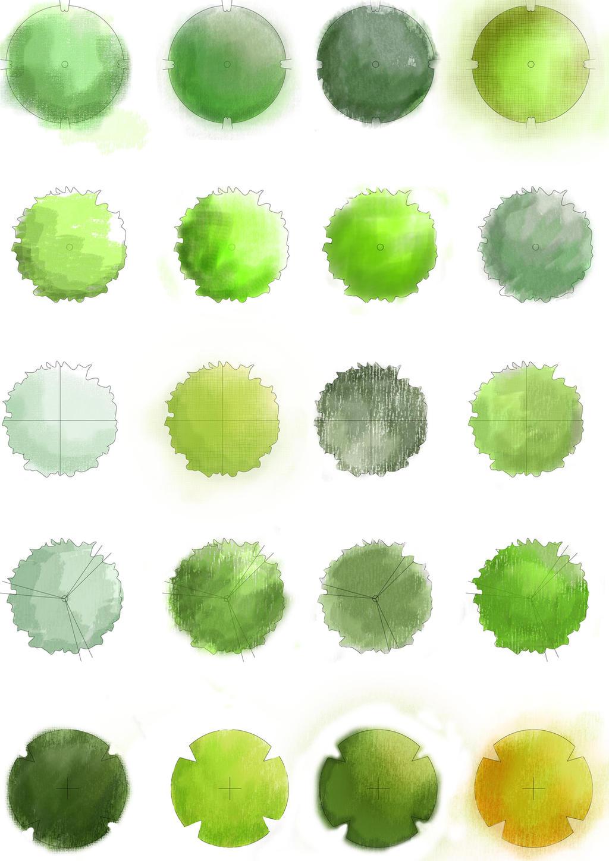 Architecture Tree Plan Trees Plan by Boomyrui