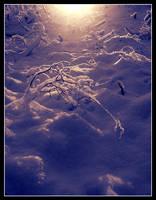 Heavenly Snowfield by Mrichston
