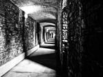 The corridors of power by Liam-diamond