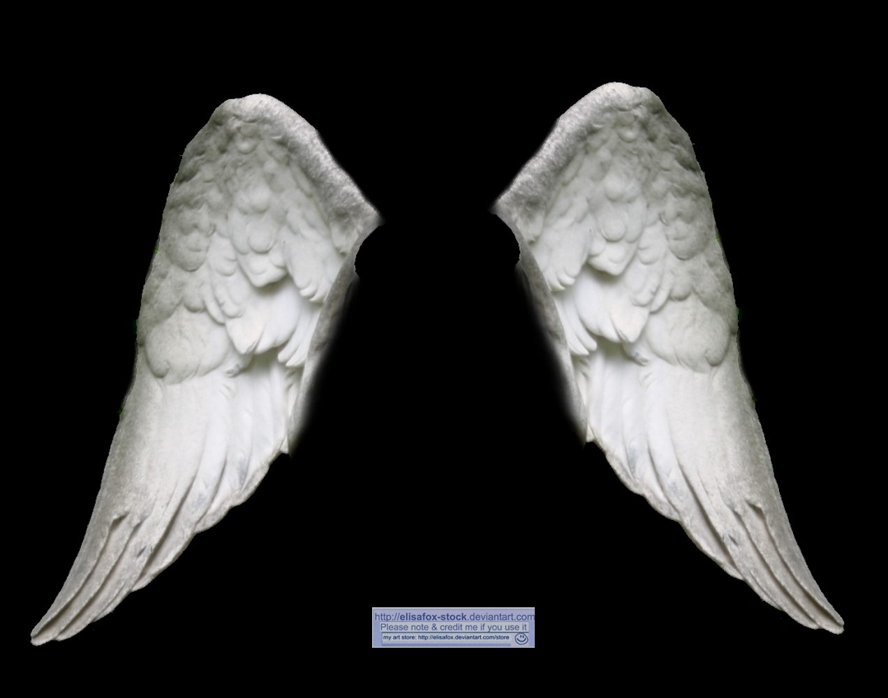 angel wings black background - photo #37