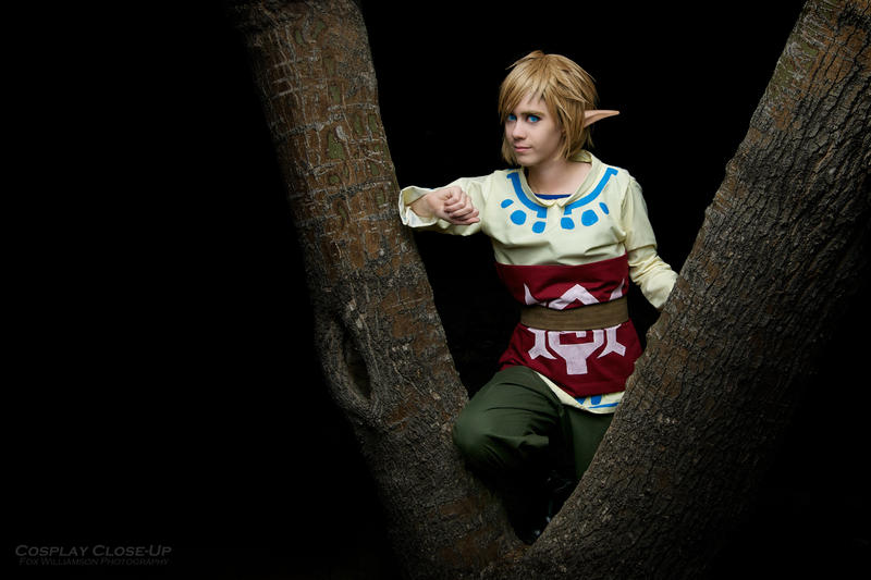 Skyward Sword: Link of Skyloft by OztheNekoMaster