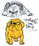 Jake the dog by GRODSPEED