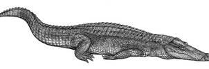Mesozoic crocodile by Biarmosuchus