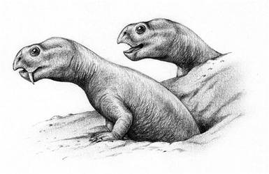 Diictodon by Biarmosuchus