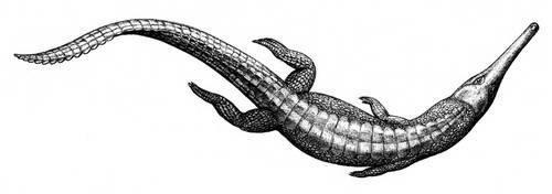 Steneosaurus by Biarmosuchus