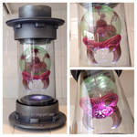 Metroid Hatchling in containment cylinder