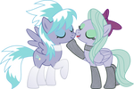 Cloudchaser and Flitter PNG