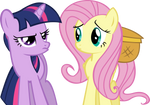 Twilight Sparkle and Fluttershy Vector - Unamused