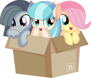 Fluttershy Coco Pommel and Marble Pie - Box by CyanLightning