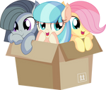 Fluttershy Coco Pommel and Marble Pie - Box