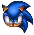 Random Sonic BUST... thingy