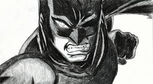 Batmans fury
