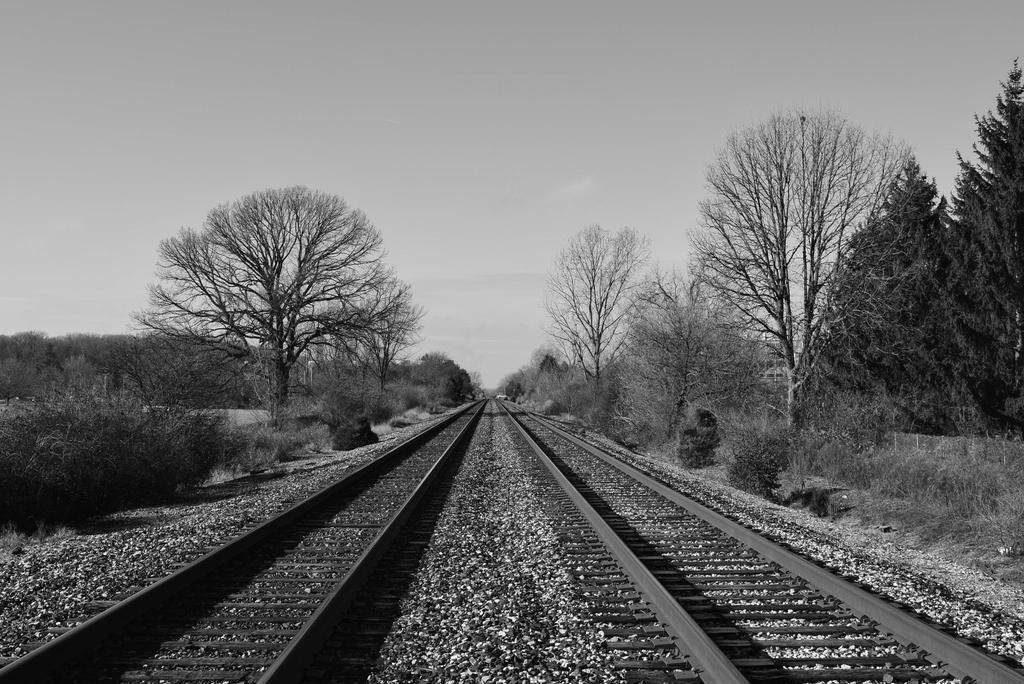 Tracks by fandomizing-always